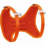 Kids Body Harness
